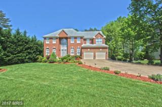 5387 Willow Valley Road, Clifton, VA 20124 (#FX9944005) :: Pearson Smith Realty