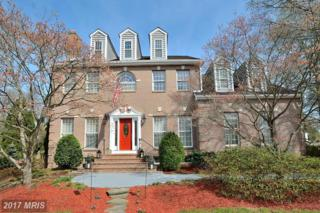 8217 Fort Hunt Road, Alexandria, VA 22308 (#FX9944491) :: Pearson Smith Realty