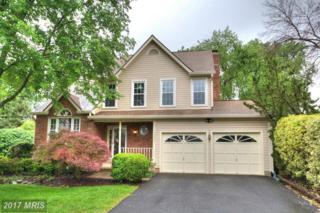 13245 Stone Heather Drive, Herndon, VA 20171 (#FX9944517) :: Pearson Smith Realty