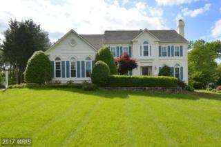 773 Follin Farm Lane, Great Falls, VA 22066 (#FX9945554) :: Pearson Smith Realty