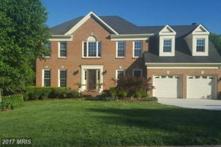 13327 Scotsmore Way, Herndon, VA 20171 (#FX9945981) :: Pearson Smith Realty