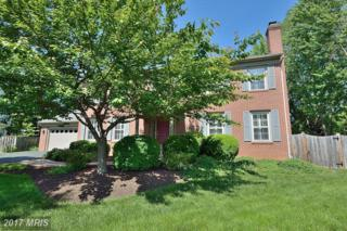 13420 Black Gum Court, Chantilly, VA 20151 (#FX9946011) :: Pearson Smith Realty