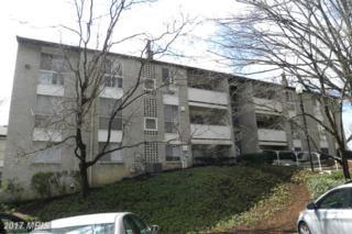 5616 Bismach Drive T2, Alexandria, VA 22312 (#FX9946623) :: Pearson Smith Realty