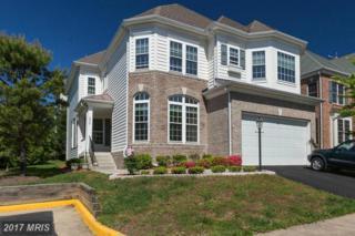 5642 Kertscher Terrace, Centreville, VA 20120 (#FX9947149) :: Pearson Smith Realty