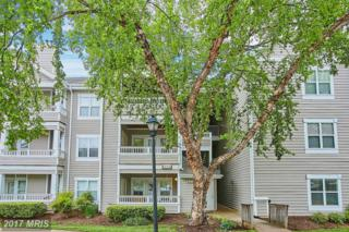 14304 Rosy Lane #24, Centreville, VA 20121 (#FX9948262) :: Pearson Smith Realty