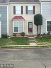 6523 Old Carriage Way, Alexandria, VA 22315 (#FX9948527) :: Pearson Smith Realty