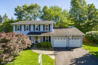 12537 Browns Ferry Road, Herndon, VA 20170 (#FX9948620) :: Pearson Smith Realty