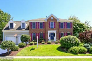 13946 South Springs Drive, Clifton, VA 20124 (#FX9948935) :: Pearson Smith Realty