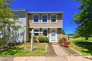 8323 Pondside Terrace, Alexandria, VA 22309 (#FX9949137) :: Pearson Smith Realty