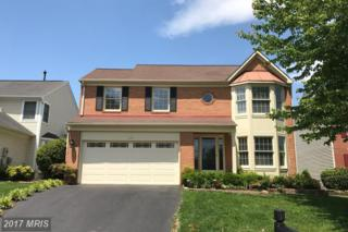 5608 Schoolfield Court, Centreville, VA 20120 (#FX9949140) :: Pearson Smith Realty
