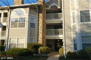 5605 Willoughby Newton Drive #21, Centreville, VA 20120 (#FX9949151) :: Pearson Smith Realty