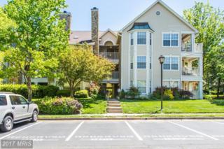 5632 Willoughby Newton Drive #24, Centreville, VA 20120 (#FX9949726) :: Pearson Smith Realty