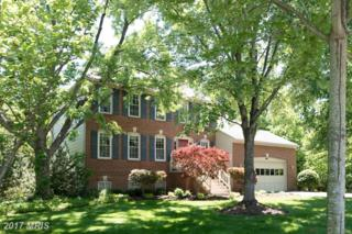 6351 Lee Forest Path, Centreville, VA 20120 (#FX9949758) :: Pearson Smith Realty