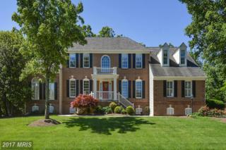 15557 Smithfield Place, Centreville, VA 20120 (#FX9950565) :: Pearson Smith Realty