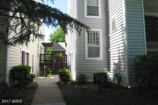 10047 Oakton Terrace Road #10047, Oakton, VA 22124 (#FX9950791) :: Pearson Smith Realty