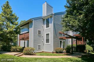 10082 Oakton Terrace Road, Oakton, VA 22124 (#FX9951084) :: Pearson Smith Realty