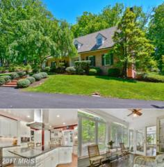 11635 Blue Ridge Lane, Great Falls, VA 22066 (#FX9951138) :: Wicker Homes Group