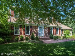 3702 Riverwood Road, Alexandria, VA 22309 (#FX9951830) :: Pearson Smith Realty