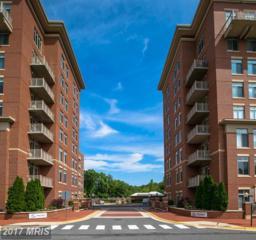 4490 Market Commons Drive #313, Fairfax, VA 22033 (#FX9951960) :: Pearson Smith Realty