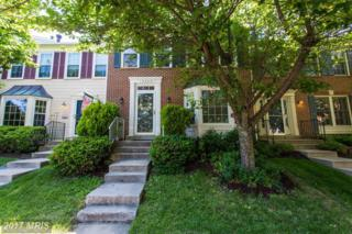 13943 Waterflow Place, Centreville, VA 20121 (#FX9952726) :: Pearson Smith Realty