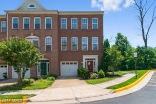 13621 Red Squirrel Way, Herndon, VA 20171 (#FX9953249) :: Pearson Smith Realty