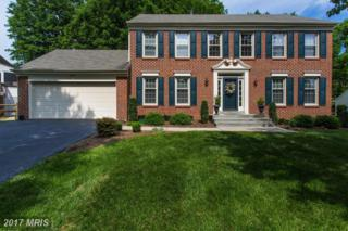 6110 Bluffdale Court, Clifton, VA 20124 (#FX9953683) :: Pearson Smith Realty