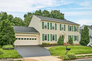 6204 Sandstone Way, Clifton, VA 20124 (#FX9954057) :: Pearson Smith Realty