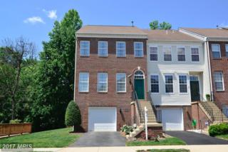 14633 Seasons Drive, Centreville, VA 20120 (#FX9954496) :: Pearson Smith Realty