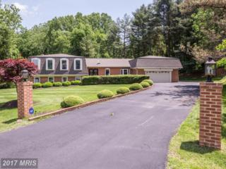 1209 Trotting Horse Lane, Great Falls, VA 22066 (#FX9954853) :: Pearson Smith Realty