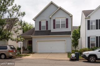 6013 Honnicut Drive, Centreville, VA 20121 (#FX9954894) :: Pearson Smith Realty