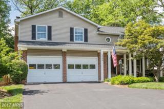 13106 Coralberry Drive, Fairfax, VA 22033 (#FX9954943) :: Pearson Smith Realty