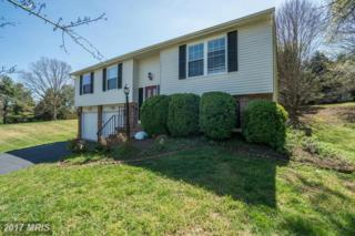 1170 Kettle Pond Lane, Great Falls, VA 22066 (#FX9955225) :: Pearson Smith Realty
