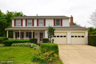14609 Farm Pond Court, Centreville, VA 20120 (#FX9956715) :: Pearson Smith Realty