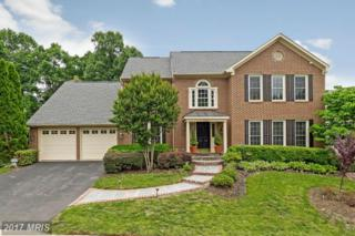 14202 Pony Hill Court, Centreville, VA 20121 (#FX9957039) :: Pearson Smith Realty
