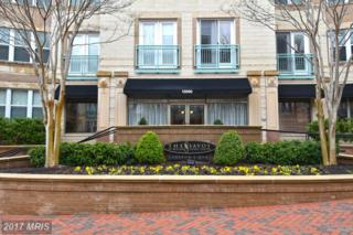 12000 Market Street #390, Reston, VA 20190 (#FX9957068) :: Pearson Smith Realty
