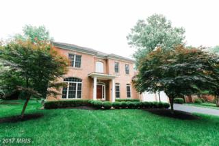 6420 Divine Street, Mclean, VA 22101 (#FX9958063) :: Pearson Smith Realty