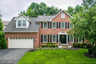 13908 Stonefield Lane, Clifton, VA 20124 (#FX9958203) :: Pearson Smith Realty