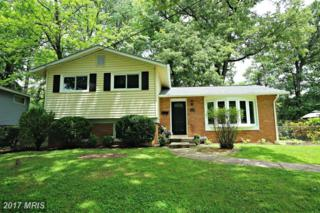4515 Mayfield Drive, Annandale, VA 22003 (#FX9958410) :: Pearson Smith Realty