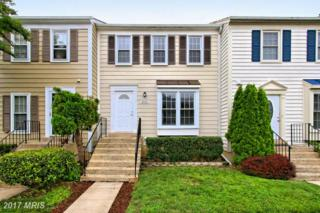 8010 Dayspring Court, Springfield, VA 22153 (#FX9958444) :: Pearson Smith Realty