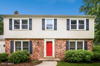 12801 Bexhill Court, Herndon, VA 20171 (#FX9958919) :: Pearson Smith Realty