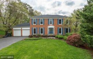 13213 Shady Ridge Lane, Fairfax, VA 22033 (#FX9959143) :: Pearson Smith Realty