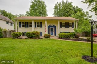 14920 Jaslow Street, Centreville, VA 20120 (#FX9959350) :: Pearson Smith Realty
