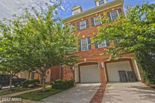 4610 Hummingbird Way #97, Fairfax, VA 22033 (#FX9959949) :: Pearson Smith Realty