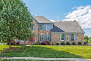 6208 Secret Hollow Lane, Centreville, VA 20120 (#FX9960089) :: Pearson Smith Realty