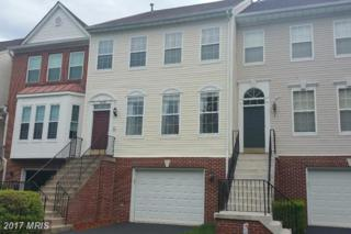 7805 Desiree Street, Alexandria, VA 22315 (#FX9960204) :: Arlington Realty, Inc.