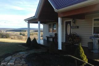 101 Morning Glory Drive, Swanton, MD 21561 (#GA9865214) :: Pearson Smith Realty