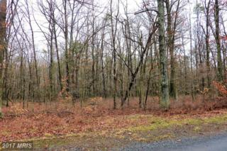 46 Southwoods Drive, Swanton, MD 21561 (#GA9876068) :: Pearson Smith Realty