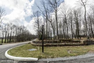 85 Biltmore View, McHenry, MD 21541 (#GA9898849) :: LoCoMusings