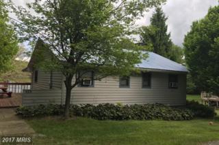 625 Shoreline Drive, Swanton, MD 21561 (#GA9959626) :: Pearson Smith Realty