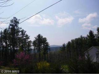 24 Deer Path, Stanardsville, VA 22973 (#GR9639304) :: Pearson Smith Realty
